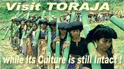 Visit Toraja Land
